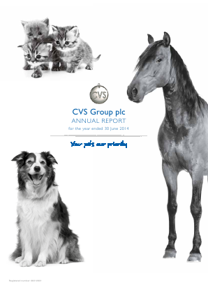 Cvs Group Plc annual report 2014