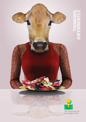 Dairy Crest Group annual report 2014