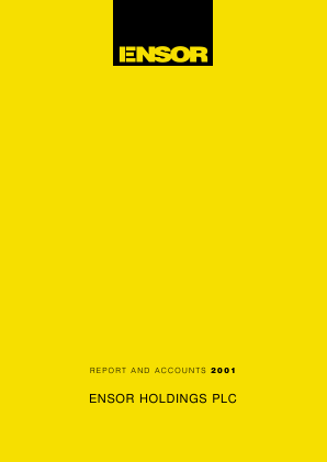 Ensor Holdings annual report 2001