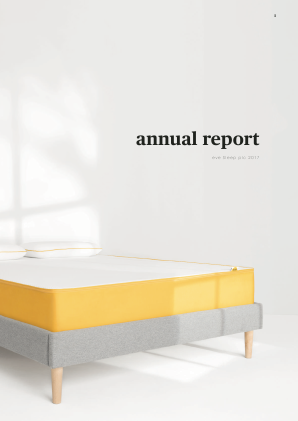 Eve Sleep annual report 2017