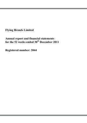 Flying Brands annual report 2011