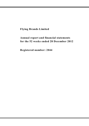 Flying Brands annual report 2012