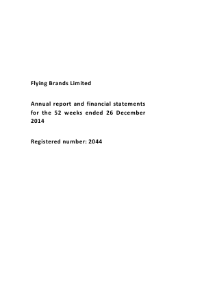 Flying Brands annual report 2014