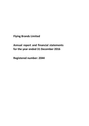 Flying Brands annual report 2016
