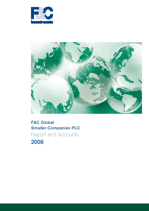 F&C Global Smaller Companies annual report 2008