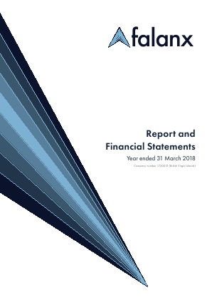 Falanx Group annual report 2018