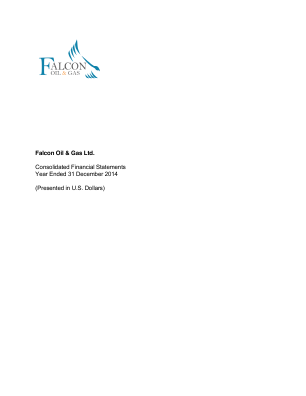 Falcon Oil & Gas annual report 2014