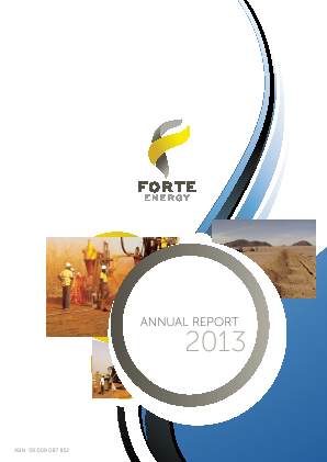 BOS Global (formally Forte Energy Nl) annual report 2013