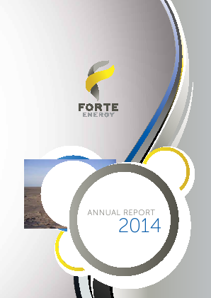 BOS Global (formally Forte Energy Nl) annual report 2014