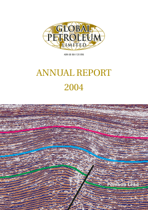 Global Petroleum annual report 2004