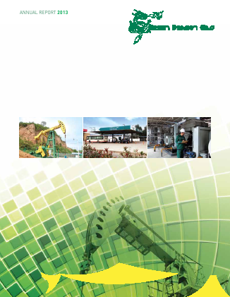 Green Dragon Gas annual report 2013