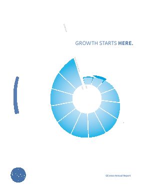 General Electric annual report 2010