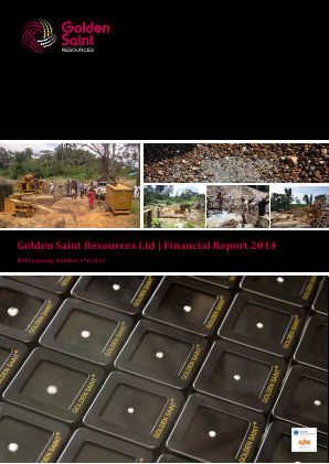 Golden Saint Resources annual report 2014