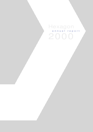 Hexagon annual report 2000