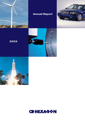 Hexagon annual report 2003