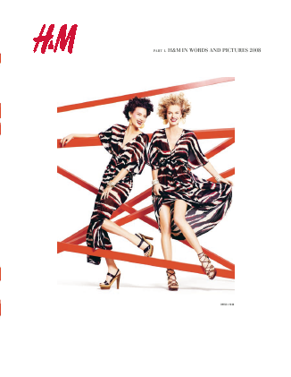 Hennes & Mauritz annual report 2008