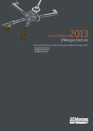 JP Morgan Elect annual report 2013