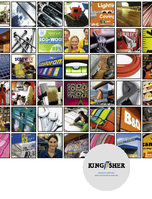Kingfisher annual report 2008