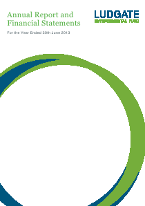 Ludgate Environmental Fund annual report 2013