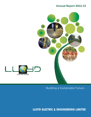 Lloyd Electric & Engineering annual report 2013