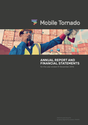 Mobile Tornado Group annual report 2016