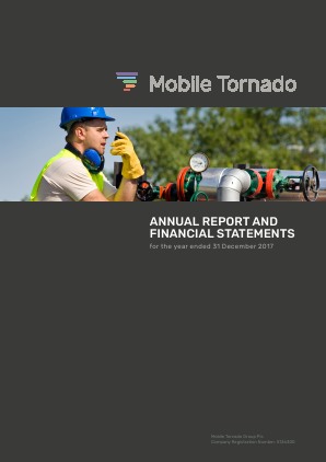 Mobile Tornado Group annual report 2017