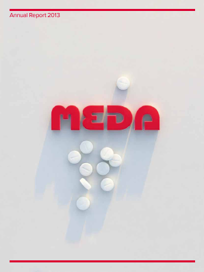Meda annual report 2013