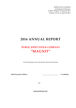 Magnit PJSC annual report 2016