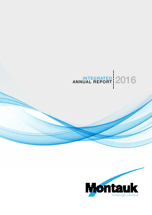Montauk Holdings annual report 2016