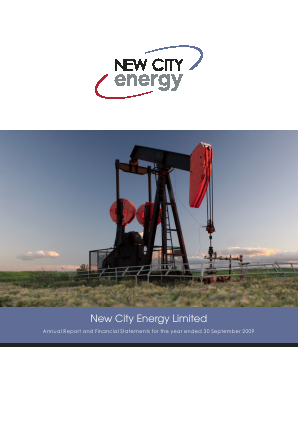 New City Energy annual report 2009