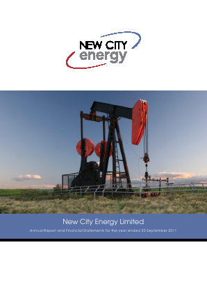 New City Energy annual report 2011