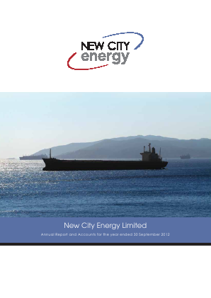 New City Energy annual report 2012