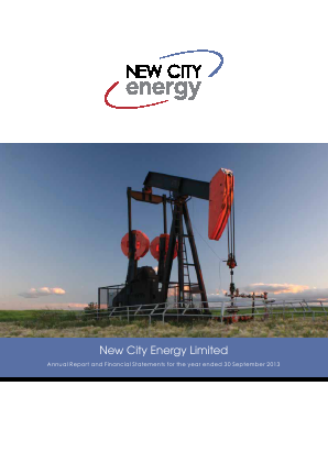 New City Energy annual report 2013