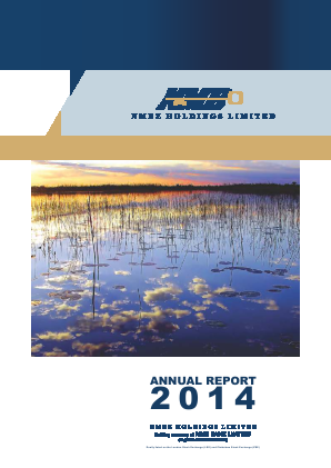 NMBZ Holdings annual report 2014