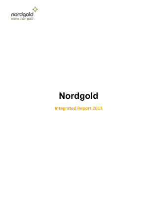Nord Gold NV annual report 2013