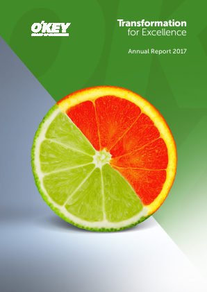 O'key Group SA annual report 2017