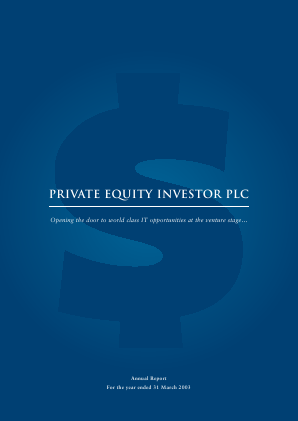 Private Equity Investor annual report 2003
