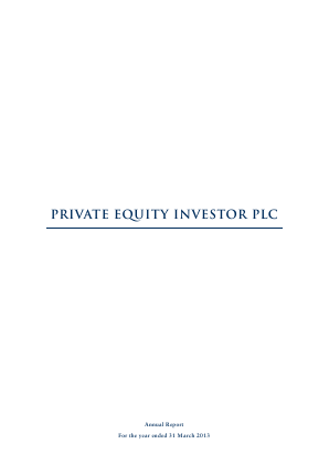 Private Equity Investor annual report 2013