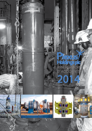 Plexus Holdings annual report 2014