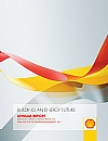 Royal Dutch Shell annual report 2011