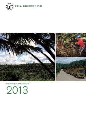 REA Holdings Plc annual report 2013
