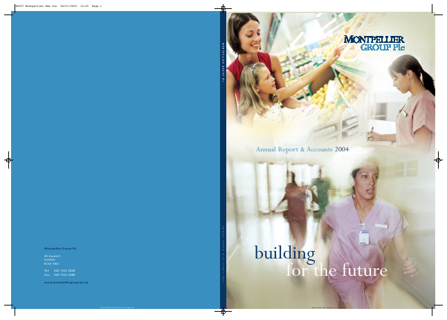 Renew Holdings annual report 2004