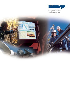 Schlumberger annual report 2002
