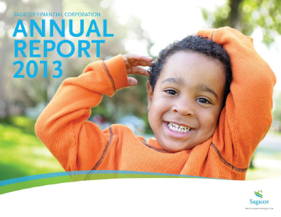Sagicor Financial Corp annual report 2013