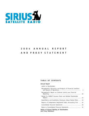Sirius XM Holdings Inc. annual report 2004