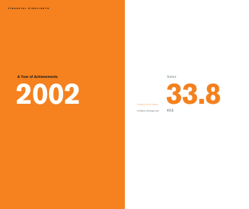 Samsung Electronics Co annual report 2002