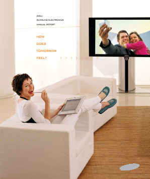 Samsung Electronics annual report 2004