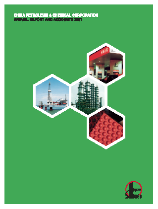 China Petroleum & Chemical Corp(Sinopec Group) annual report 2001