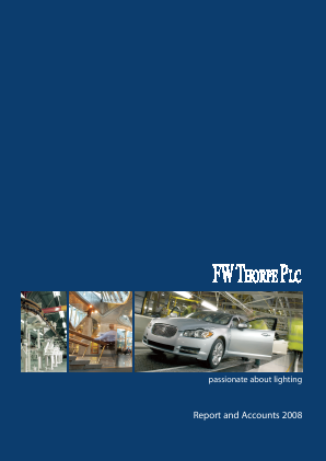 Thorpe(F.W.) annual report 2008