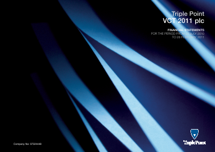 Triple Point VCT 2011 Plc annual report 2011